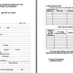 Mẫu sơ yếu lý lịch chuẩn & cách viết chính xác nhất