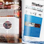 In catalogue giá rẻ TpHCM đẹp, thiết kế chuyên nghiệp, nhanh gọn
