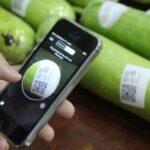In tem truy xuất nguồn gốc sản phẩm dạng QR code, barcode và SMS